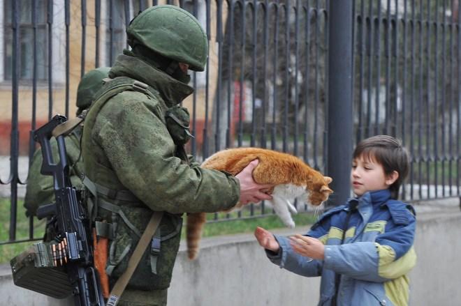 is2_Вежливые люди и кот
